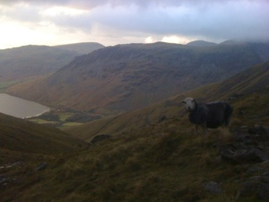 View to Wastwater from top of Brown Tongue